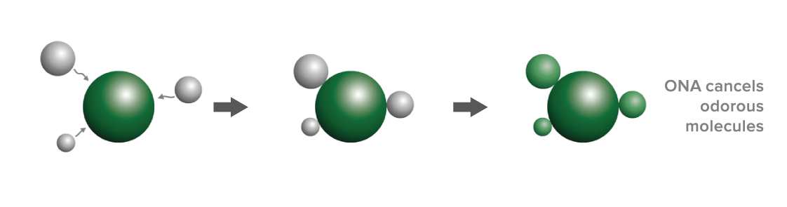 ONA Chemical Reaction